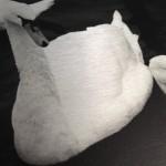 foto op geborsteld aluminium zwart wit