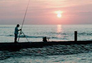 zeevissen, visser, natuurfotografie, zee