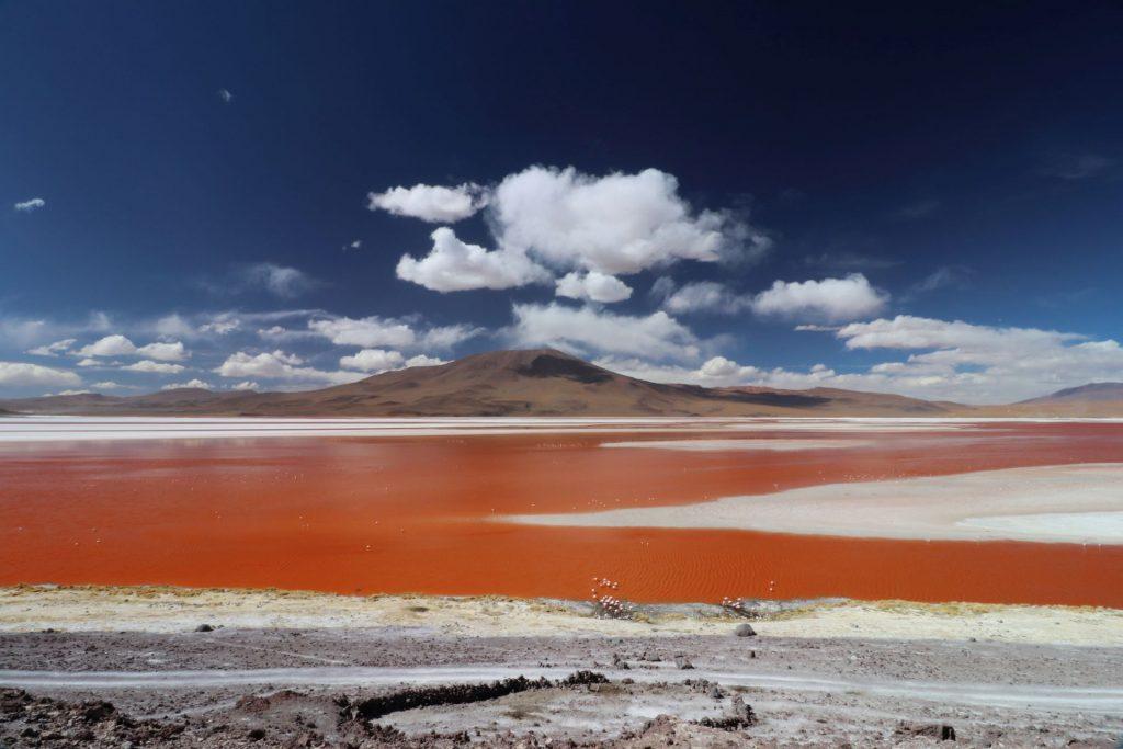 laguna colorada, bolivia, vakantiefoto, reisbestemming